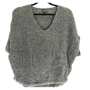 Express blue/gray sweater XS